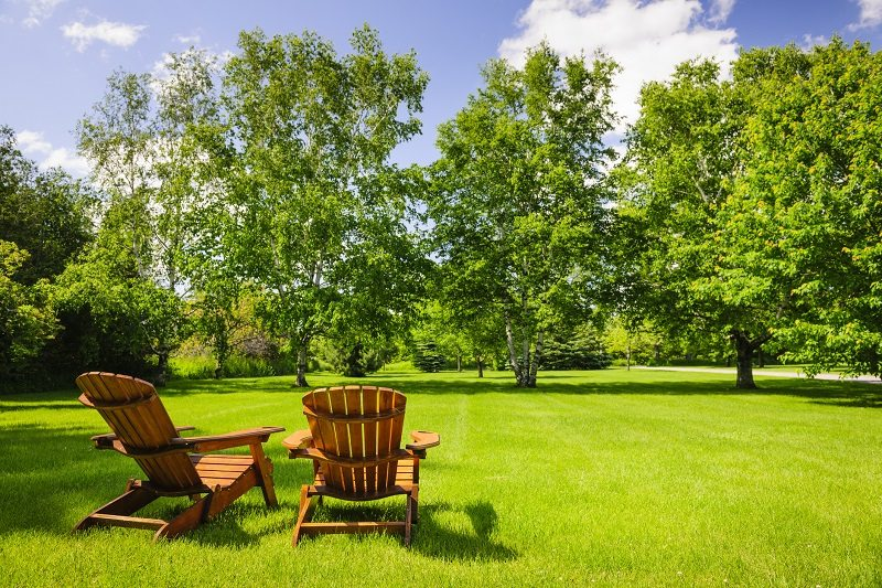 green lawn mature trees adirondack chairs