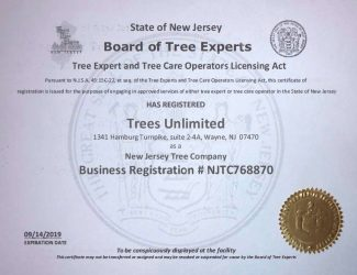 Tree Expert amnd Tree Care Operators License