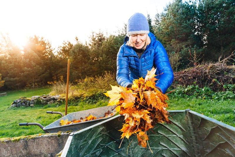 Person Filling a Bin to Make Compost