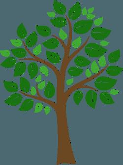 Single Tree Graphic