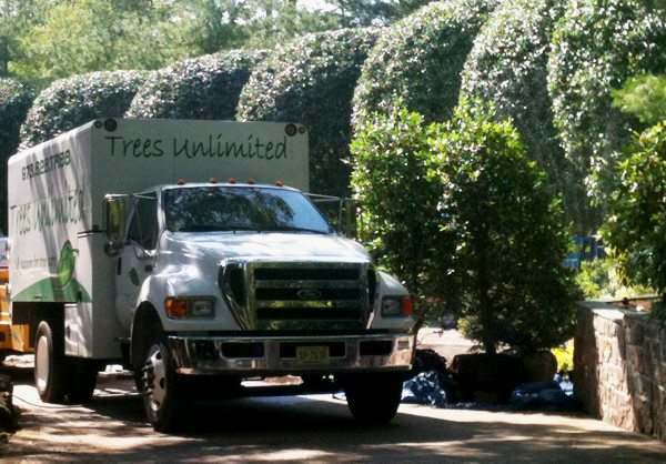 Trees Unlimited Truck for Tree Pruning & Trimming